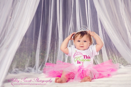 first birthday princess, fredericksburg va children's photographer