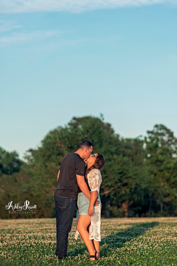 couple kissing in field at sunset